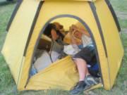 SM Pop Tent_image